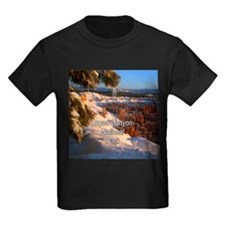 Bryce Canyon National Park T
