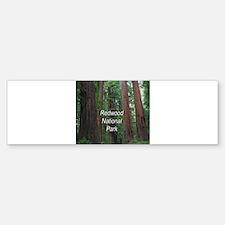 Redwood National Park Bumper Bumper Sticker