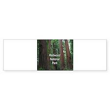 Redwood National Park Bumper Sticker