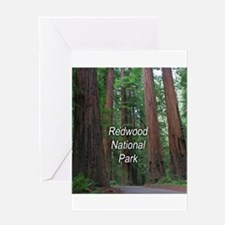 Redwood National Park Greeting Card