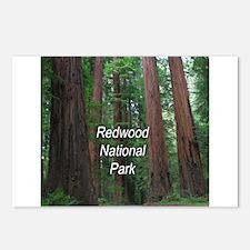 Redwood National Park Postcards (Package of 8)