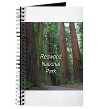 Redwood National Park Journal