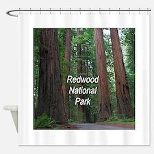 Redwood National Park Shower Curtain