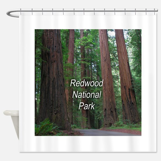 Redwood National Park Shower Curtain