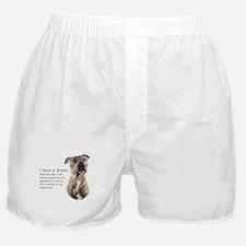 Dream Boxer Shorts