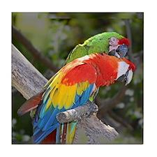 Parrot Pair Tile Coaster