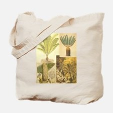 Cycads of the 1800s Tote Bag