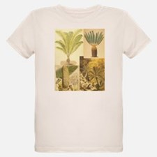 Cycads of the 1800s T-Shirt