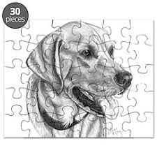 Yellow Labrador Retriever Puzzle