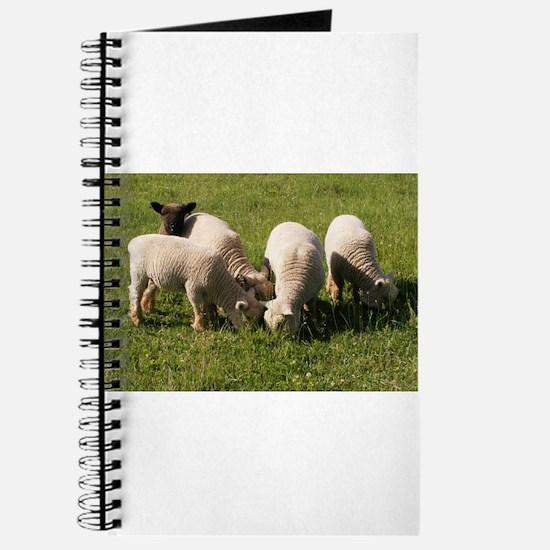 Ewe-niquely Me! Journal