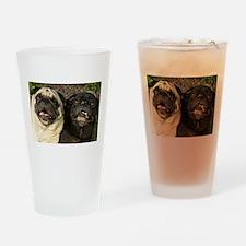Pug Pair Drinking Glass