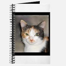 Heystack Kitty Journal