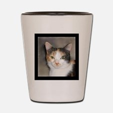 Heystack Kitty Shot Glass