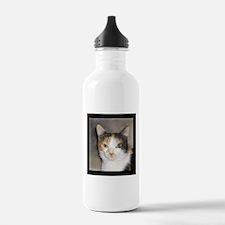 Heystack Kitty Water Bottle