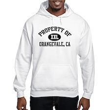 Property of ORANGEVALE Hoodie
