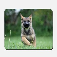 German Shepherd dog puppy Mousepad