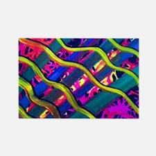 In Living Color Rectangle Magnet