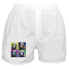 Weimaraner a la Warhol Boxer Shorts
