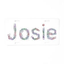 Josie Paper Clips Aluminum License Plate