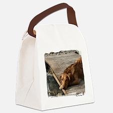 ranger eyes (2).png Canvas Lunch Bag