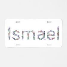 Ismael Paper Clips Aluminum License Plate