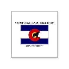 """Colorado flag Newf Square Sticker 3"""" x 3"""""""
