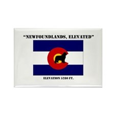Newfoundland in Colorado flag Rectangle Magnet