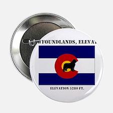 """Newfoundland in Colorado flag 2.25"""" Button"""