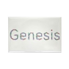 Genesis Paper Clips Rectangle Magnet