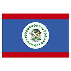 Flag of Belize Poster