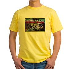 Allosaurus Snack T