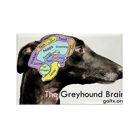 The Greyhound Brain Rectangle Magnet
