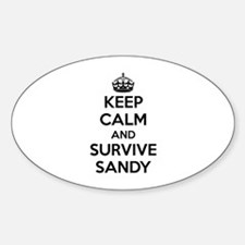 Keep Calm and Survive Sandy Decal
