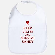 Keep Calm and Survive Sandy Bib