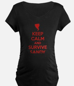 Keep Calm and Survive Sandy T-Shirt