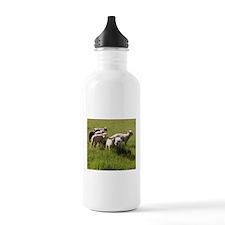 Happy Lambs Water Bottle