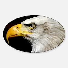 American Bald Eagle Decal