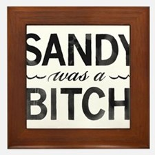 SANDY was a BITCH Framed Tile