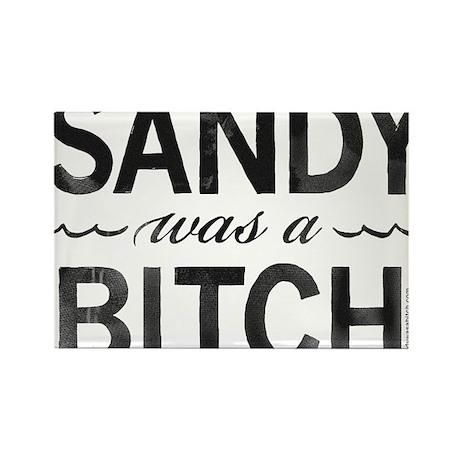 SANDY was a BITCH Rectangle Magnet