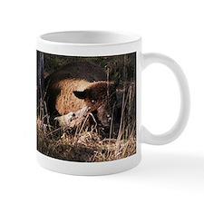 Morning Comes Early Mug
