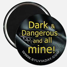 Dark Dangerous Magnet