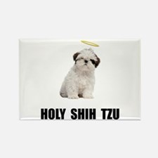 Holy Shih Tzu Rectangle Magnet (10 pack)