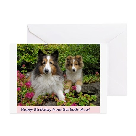 Happy Birthday from both of us! Greeting Cards (Pk