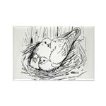 Nesting Pigeon Rectangle Magnet (100 pack)