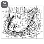 Nesting Pigeon Puzzle