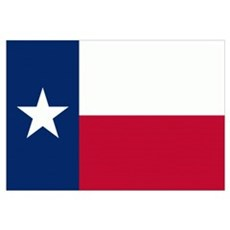 State Flag of Texas Canvas Art