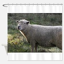 Sweet Ewe Shower Curtain