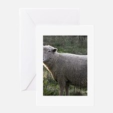 Sweet Ewe Greeting Card