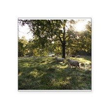 "Green Pastures Square Sticker 3"" x 3"""