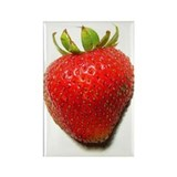 Strawberry Magnets